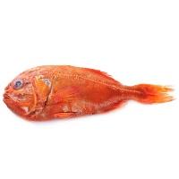 新西兰南极深海野生海捕南极长寿鱼1200g