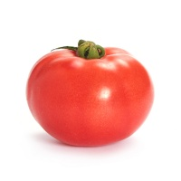 有机栽培超级番茄400-450g
