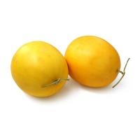 安心优选金蜜瓜1粒(单果3-5斤)