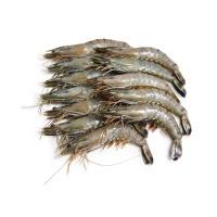 马来西亚活冻黑虎虾(21-25只\kg)400g