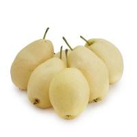 郭玉芳种植密云香酥梨4斤装