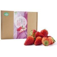 王光远种植有机红颜草莓350g装