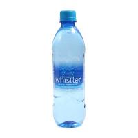 加拿大进口冰川泉水饮用水500ml