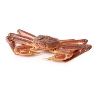 春播活水产俄罗斯板蟹900-1100g