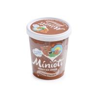 春播直采低糖低脂巧克力味冰淇淋(四人家庭分享装)500ml