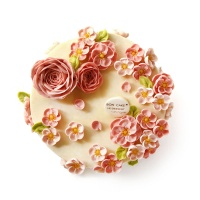 BON CAKE小桃红白豆沙蛋糕10寸