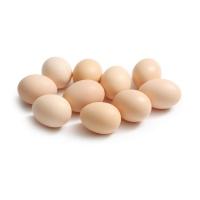净田社散养芦花鸡蛋10枚