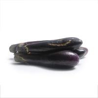 春播农庄有机栽培丑长茄400g