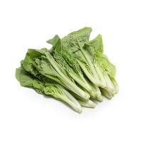 春播安心直采有机杭白菜250g