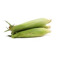 春播联盟农庄有机栽培糯玉米80