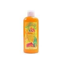 德国诺格娜有机天然草本儿童洗发沐浴液二合一200ml