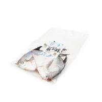 春播冰鲜水产鲳鱼 2条装 450-500g
