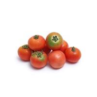 春播安心直采迷你水果番茄400g