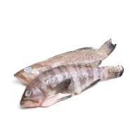 冷冻石斑鱼400g