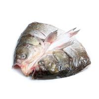 丹江口白鲢鱼头1.35kg