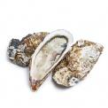 产地直采乳山牡蛎5号2000g(约8-10只)