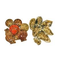 产地直采乳山牡蛎栉孔扇贝组合各1.5kg
