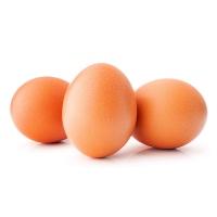 安食农科鸡蛋15枚装