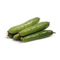 春播联盟农庄有机栽培秋黄瓜450g