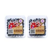 安心直采佳沃蓝莓1盒(14mm+)