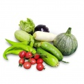 正大安心蔬菜套餐约7斤(5种)