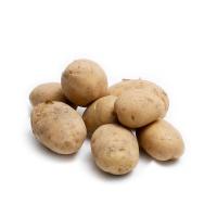 春播联盟农庄有机栽培迷你土豆750g