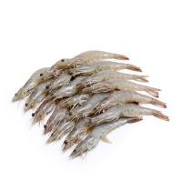 深海食堂国产盐池白虾1kg(26-30/斤)