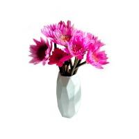 粉色睡莲(8支+2支防损耗)