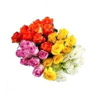 随机方德玫瑰 2扎不同色