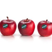 新西兰DAZZLE苹果2粒装