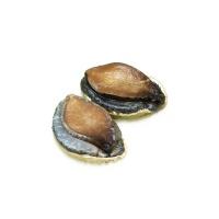春播鲜活水产南非珍珠鲍鱼5-7只装 450-550g