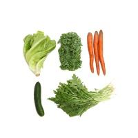 春播农庄2号芝麻菜沙拉200g
