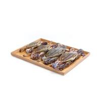 冰鲜水产青岛直采梭子蟹(4-5只)1000g