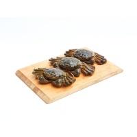 微山湖大闸蟹(2-2.5两) 母蟹2只公蟹2只