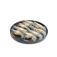 春播冰鲜水产罗氏沼虾500g