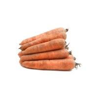 保持生物多样性种植胡萝卜丑果整箱