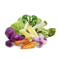 春播农庄有机蔬菜套餐8种8-10斤