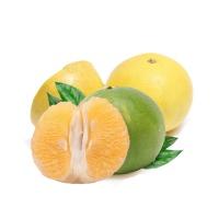 蔡银燕双色葡萄柚6粒装
